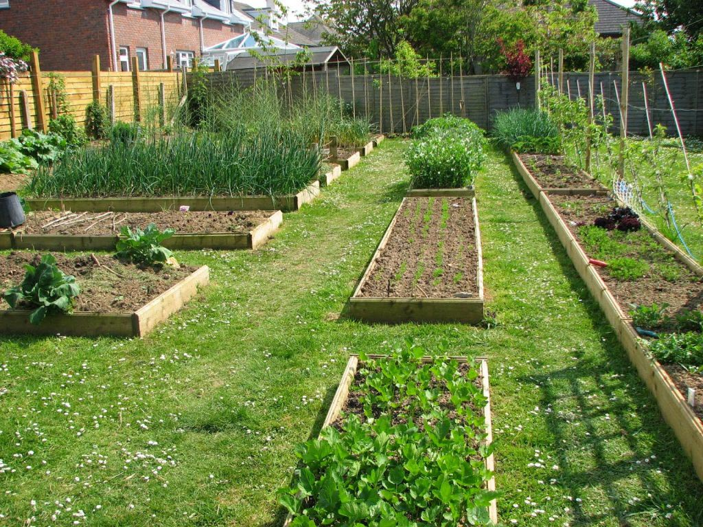 Vegetable garden planner software free garden design ideas for Vegetable garden planner