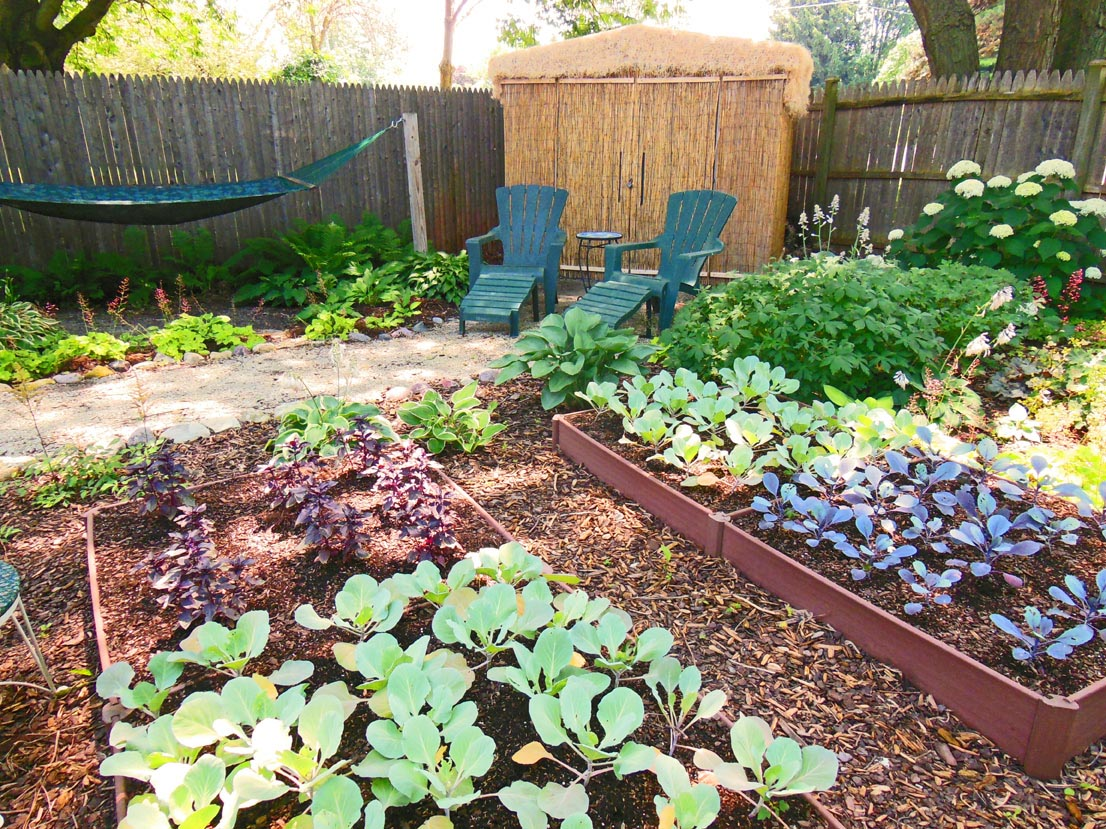 Vegetable Garden Shade Plants