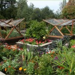 Vegetable Garden Tips and Ideas