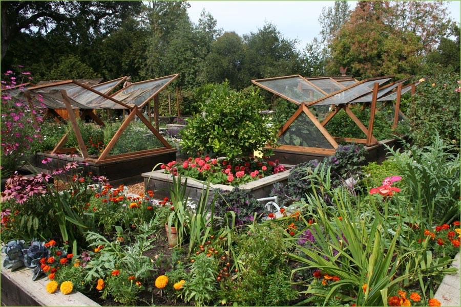 Vegetable Garden Tips and Ideas