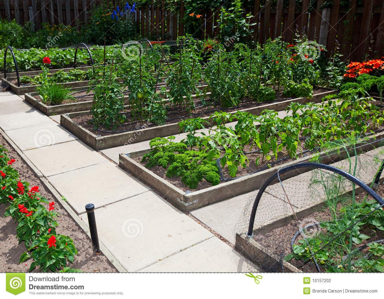 Vegetable Garden With Raised Beds Garden Design Ideas