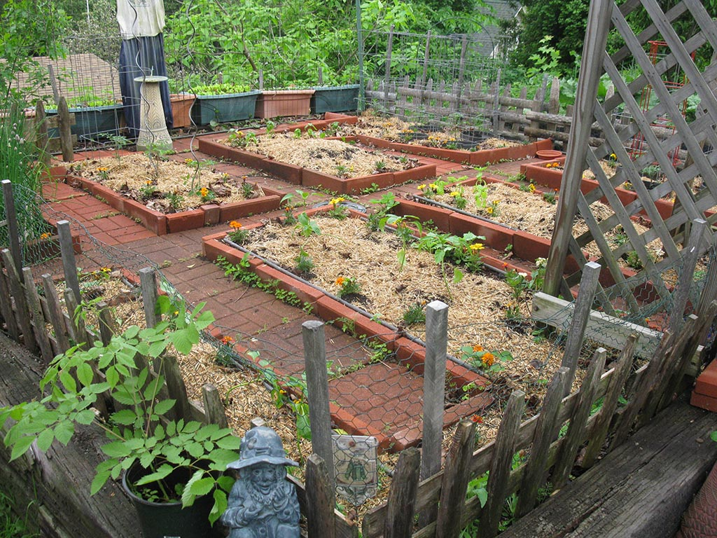 Vegetable Gardening in Small Spaces
