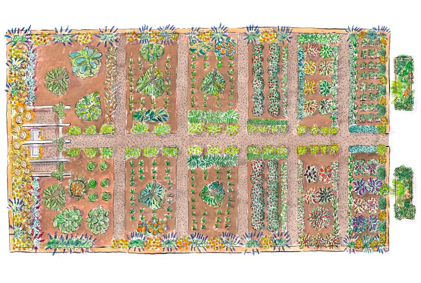 Virtual Vegetable Garden Planner Free