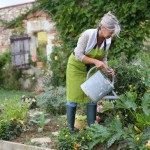 Watering a Vegetable Garden Tips