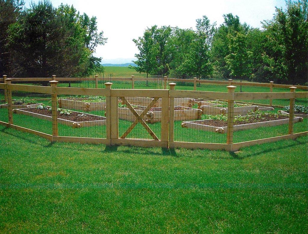 Wire Garden Fence Ideas