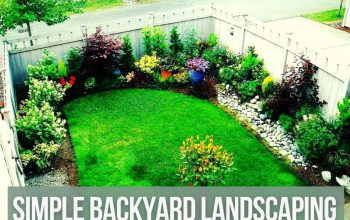 Creating Comfort with Simple Backyard Landscaping