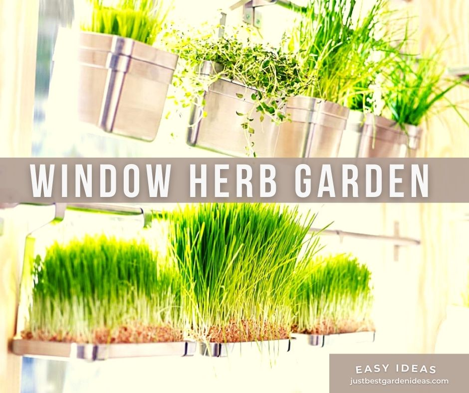 Easy Ideas for Window Herb Garden