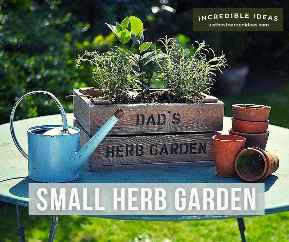 Small Herb Garden and Its Pros and Cons