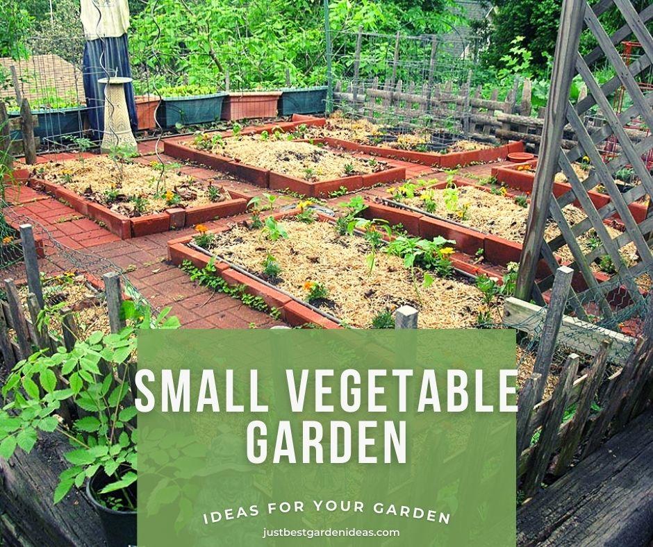 Ideas on How to do Small Vegetable Garden