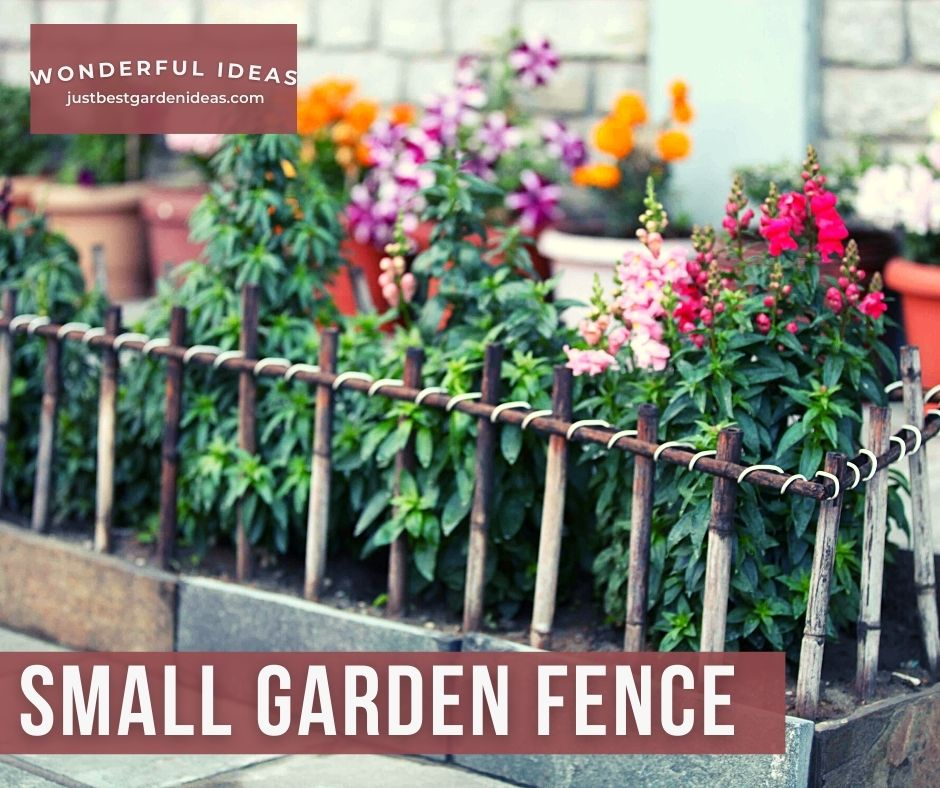 The Cutest Small Garden Fence