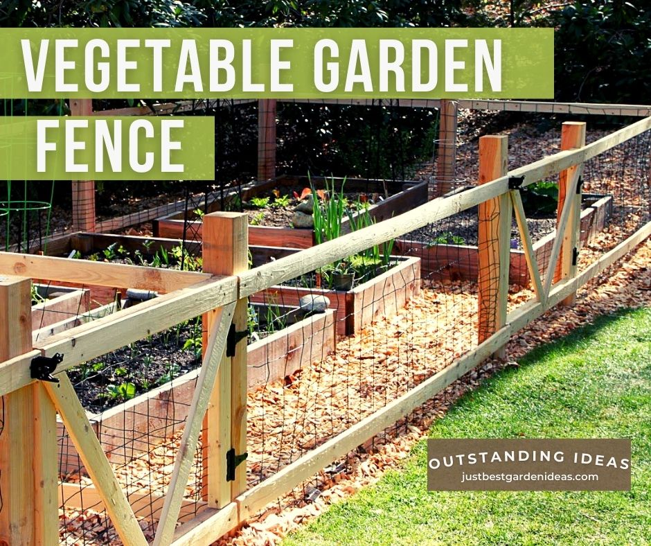 What Are the Pros And Cons of Vegetable Garden Fence