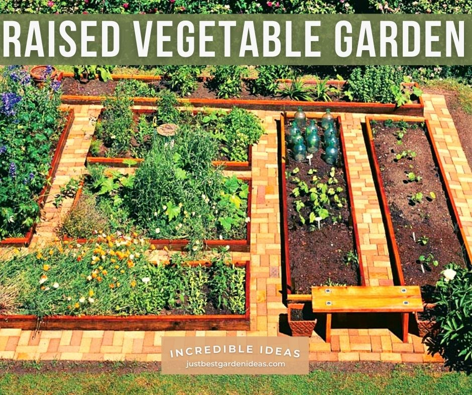 What You Should Know about Raised Vegetable Garden