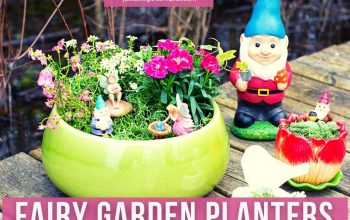 What to Expect from Fairy Garden Planters
