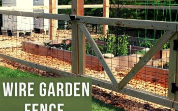 Wire Garden Fence is Really a Perfect Option